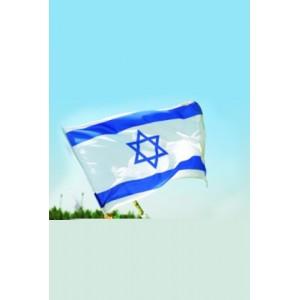 Drapeau d'Israel petit modèle